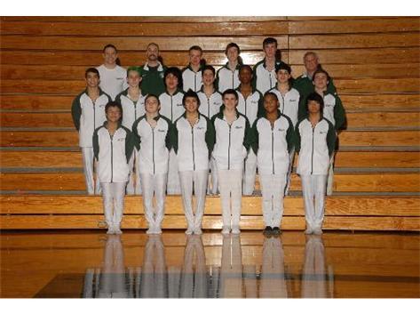 Boys Varsity Gymnastics