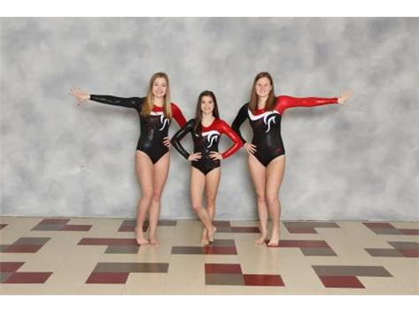 2016-17 Girls Gymnastics Seniors