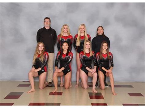 2018-19 Varsity Gymnastics Team