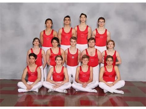 2019 Varsity Gymnastics Team