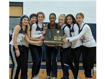 2019 IHSA Girl's Cross Country Sectional Champions