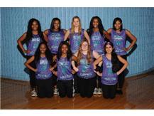 13 - 14 IMSA Dance Team