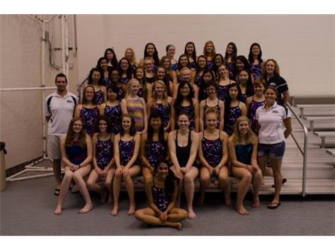 2014 IMSA / Yorkville Swim Team