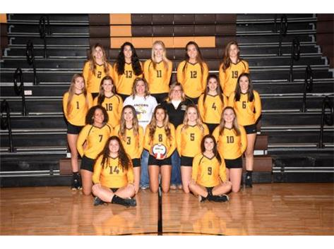 2017-18 Varsity Volleyball