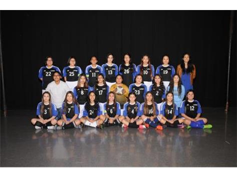 Girls Freshman Soccer 2018