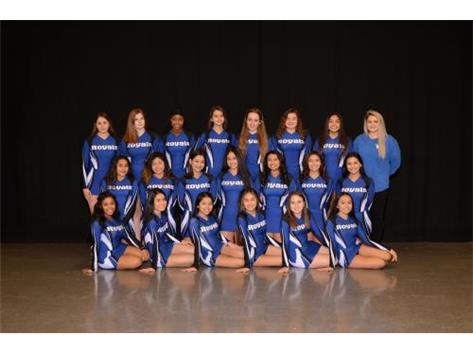 2018-2019 JV Competitive Cheer