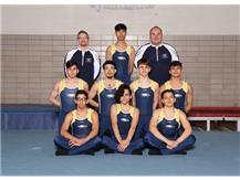 2019 Boy's Varsity Gymnastics.