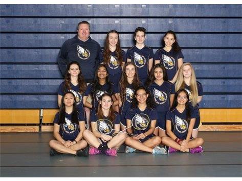 2019 Girl's Varsity Badminton.