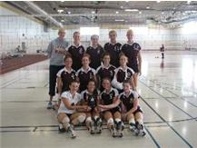 Soph. VB 2nd place at Lockport Invite