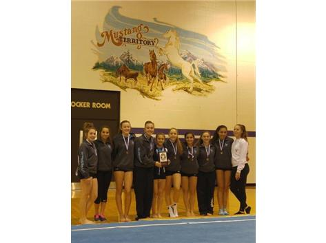 Girls Gymnastics Team Rolling Meadows Invite