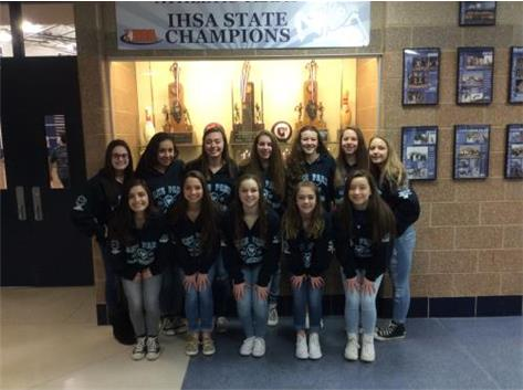 Girls Gymnastics Team 2016 IHSA Team State 5th Place. IHSA Regional & DVC Team Champions
