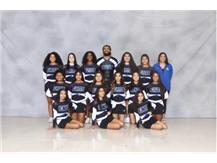 2019-2020 Varsity Cheerleading Team