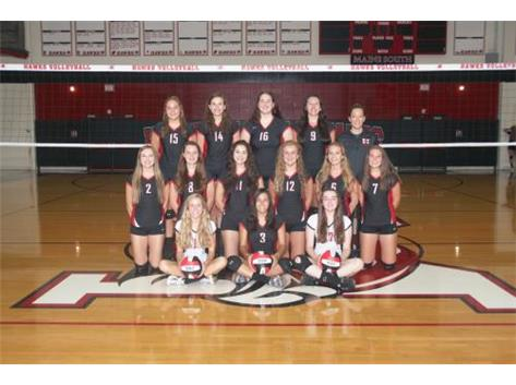 Girls Volleyball JV 2016