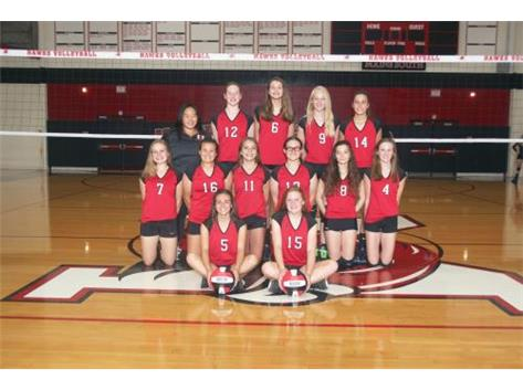 Girls Volleyball Freshmen B 2016