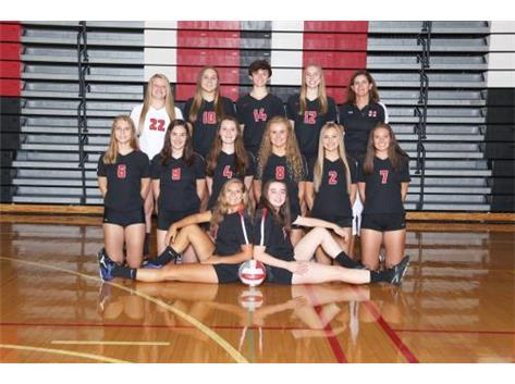 2017 Girls Varsity Volleyball