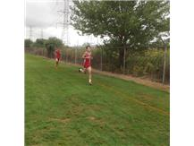 Matt Wagner on way to fourth pace finish at Reavis Invite 2016