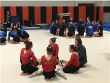 Marist Girls Gymnastics IHSA Regional 2018