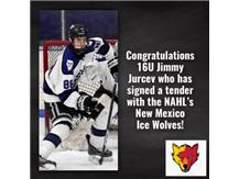 Jimmy Jurcev signs tender offer with NAHL New Mexico Ice Wolves
