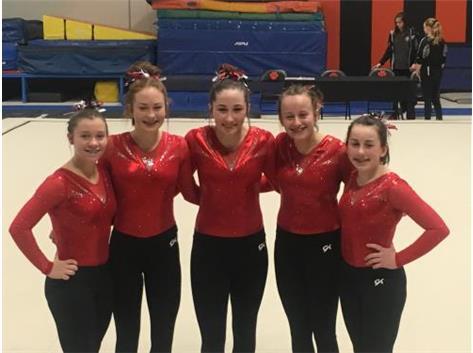 Marist Gymnastics Team at IHSA Regional 2018