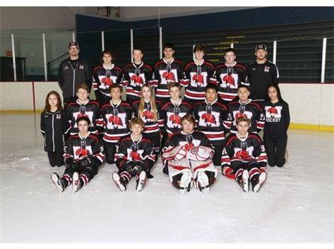 2019-2020 RedHawks JV Hockey Team