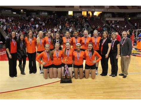 Ironmen Volleyball Finish 3rd in State