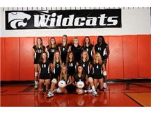 2010 Varsity  Volleyball Team