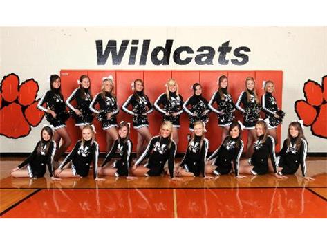 2011-2012 Varsity Basketball Cheer Team