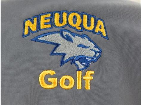 New Neuqua Logo, August 2015