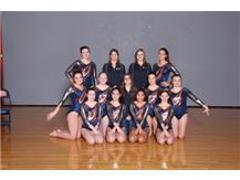 2018-2019 Varsity Gymnastics Co-op Team