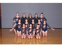 2018-2019 JV Gymnastics Co-op Team