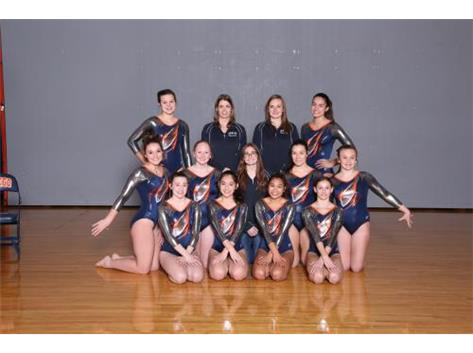 2018-2019 Varsity Gymnastics Co-op Team