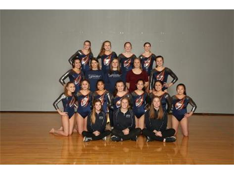 2019-2020 Co-op Varsity Gymnastics Team