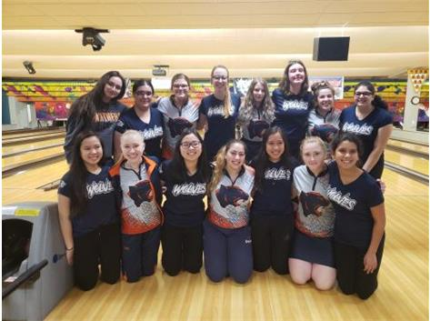 D308 Teams Qualify for State!