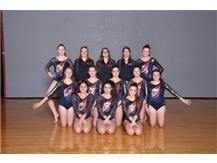 2018-2019 Co-Op JV Gymnastics