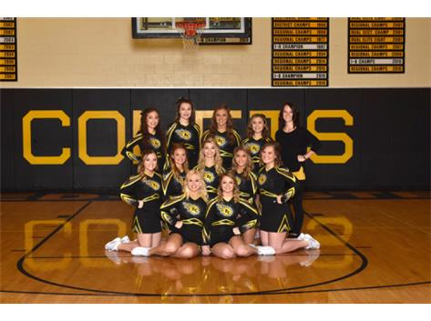 Competitive Cheer 2016-17