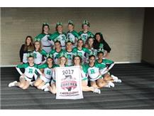 The RHS cheerleaders qualified for the ICCA State Championships in Springfield.