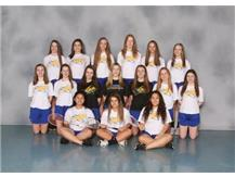 Girls Sophomore Badminton