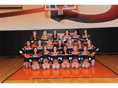 2019-20 Competitive Cheer Team