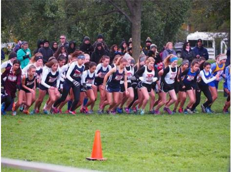 The CC team qualified for state!  Two years in a row!!