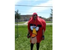 "Mr.Knoblauch ""Angry Bird"" in the dunk tank for Fitness Fair"