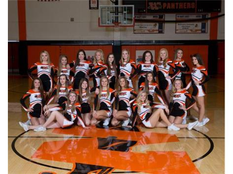 2016-2017 Competitive Cheerleaders