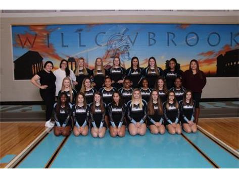 2018-19 Varsity Cheer