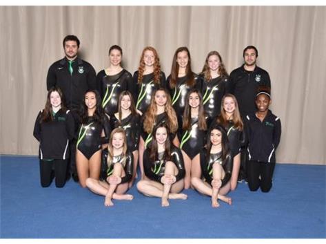 JV Gymnastics