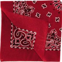 Red Bandana (1)