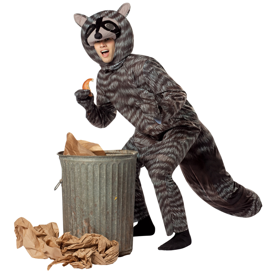 Mouse over imag... Raccoon Costume Men