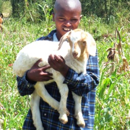Goats and Gardens for Burundi Orphans