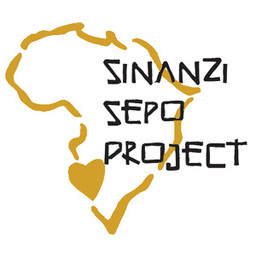 Sinanzi Sepo Project February 2019 Mission Team