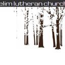 Elim Lutheran Church -Youth Alumni Trip