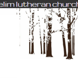 Kristine Penning's fundraiser for Elim Lutheran Church Agriculture/Building Trip