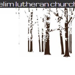 Megan McSparin's fundraiser for Elim Lutheran Church -Youth Alumni Trip
